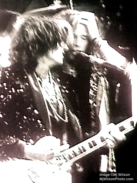 Steven Tyler & Joe Perry of Aerosmith - Atlanta 2012 Concert - by Mj Wilson Photography