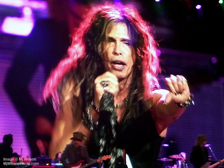 Steven Tyler - Image by Mj Wilson Photography
